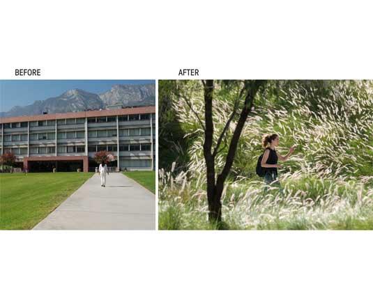 A New Campus Creation: Universidad De Monterrey