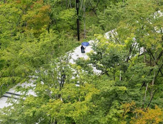 Walking the Talk, Ichigaya Forest