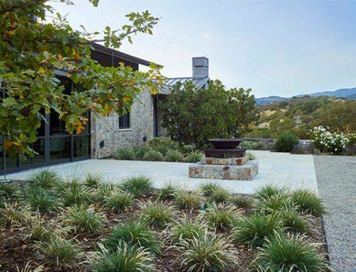 Sonoma Vineyard Estate