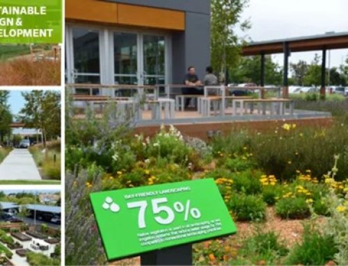 Eat – Plant – Drawdown: Why Designing for Climate Matters